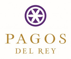 pagos_logo